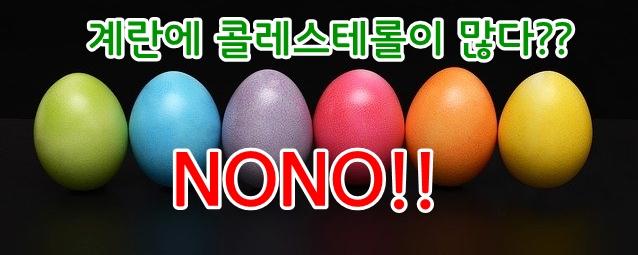 계란 콜레스테롤 안전