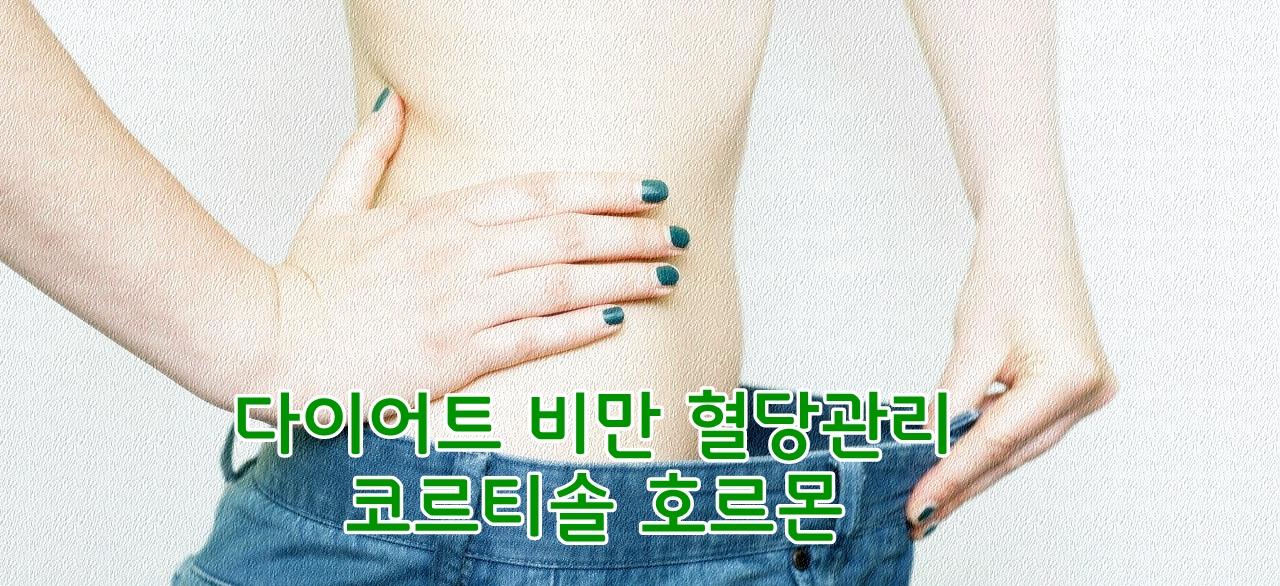 다이어트 비만 혈당