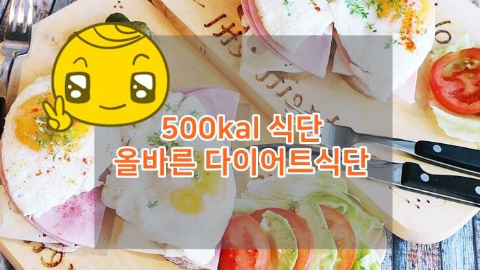 올바른 다이어트식단_500kal
