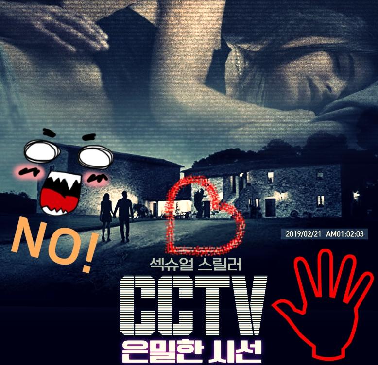 CCTV 은밀한 시선_추천스릴러물