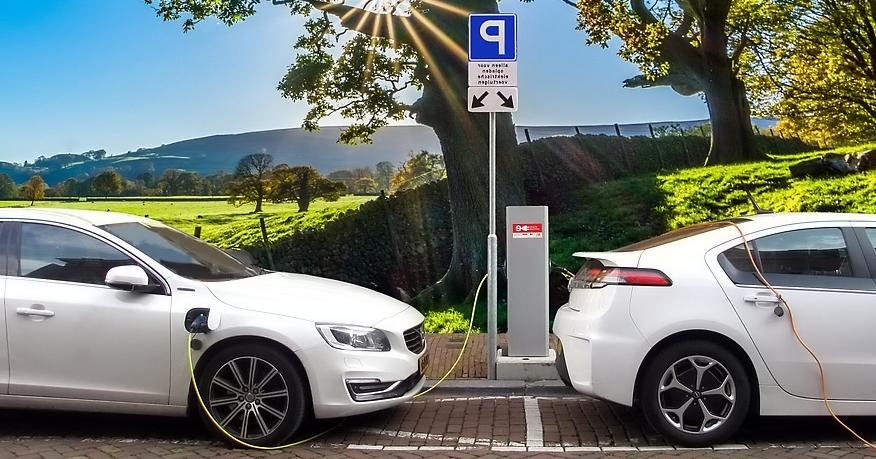 가솔린 하이브리드 비교
